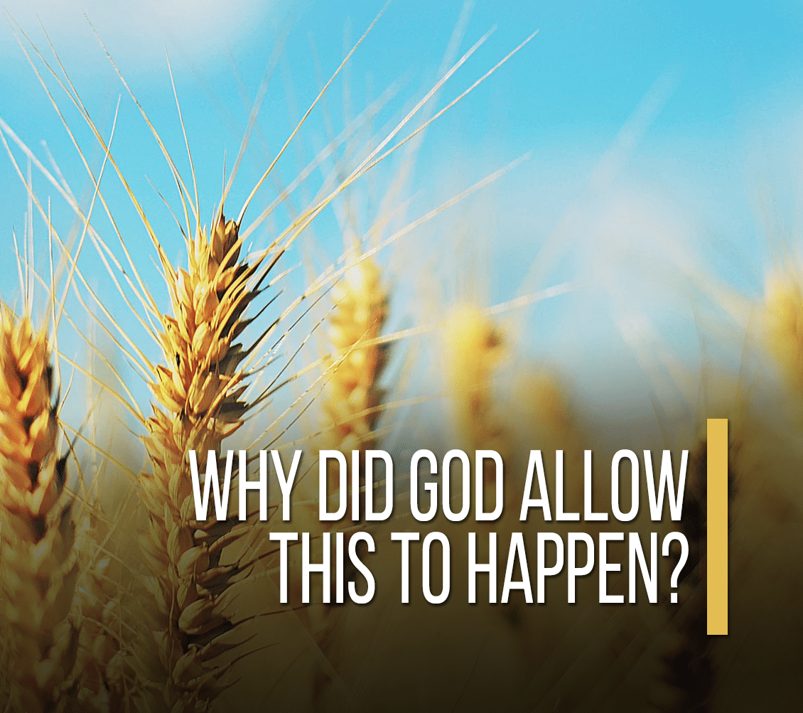 Why Did God Allow This To Happen? [Devotional]