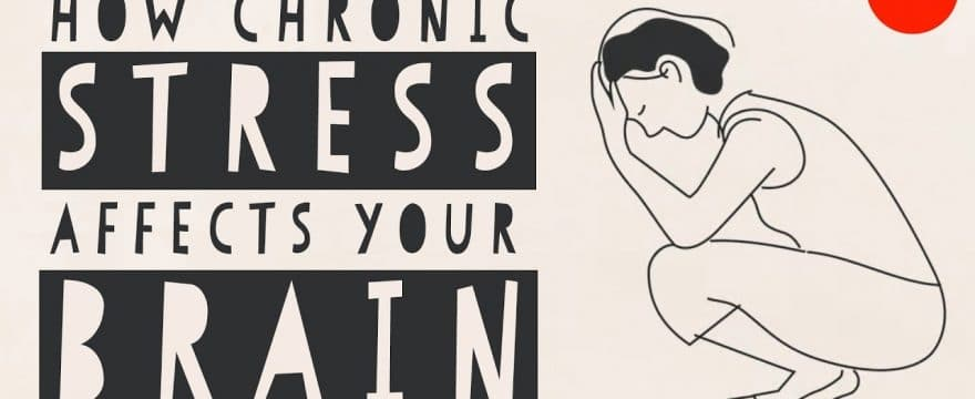 How Stress Affects Your Brain [Video]